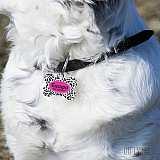 Табелка за куче с име и формата на кокал