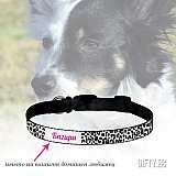 Нашийник за куче с телефонен номер или името на кучето за подарък в Gifty.BG