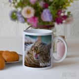 Чаша с котка