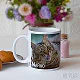 Чаша с котка за подарък на любител на котките